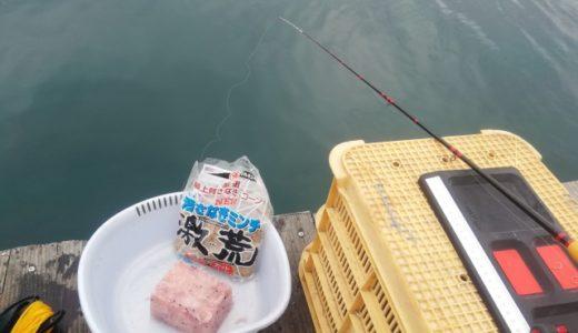 6月15日 船長釣行記